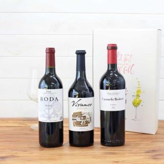 Estuche Regalo 3 Botellas de Vino nº2