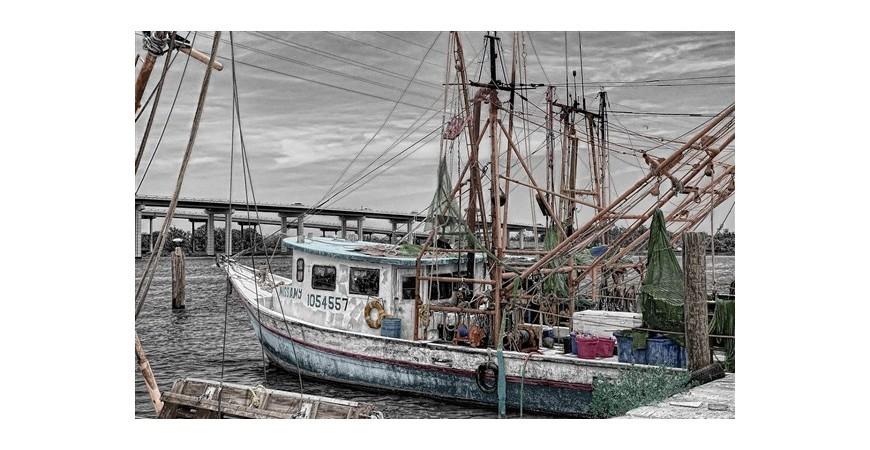 La pesca sostenible, un bien para todos