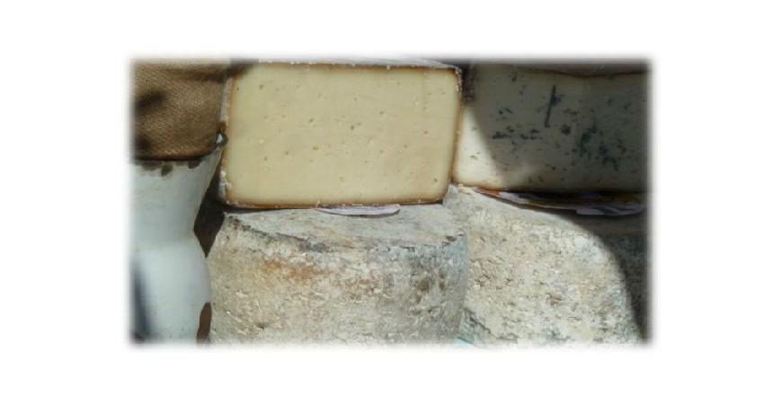 Técnicas para conservar el queso