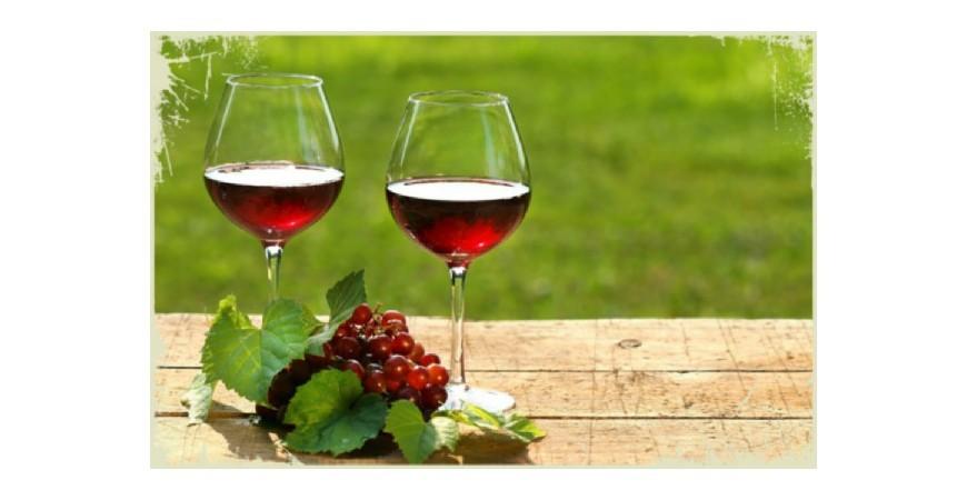 Los 10 mejores vinos de Castilla La Mancha