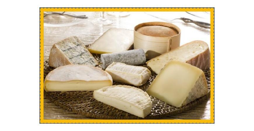 Moldes para quesos