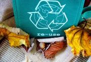 Reciclar, cuidar el planeta y formas de hacerlo