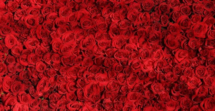 6 opciones de cestas gourmet para los regalos de San Valentín