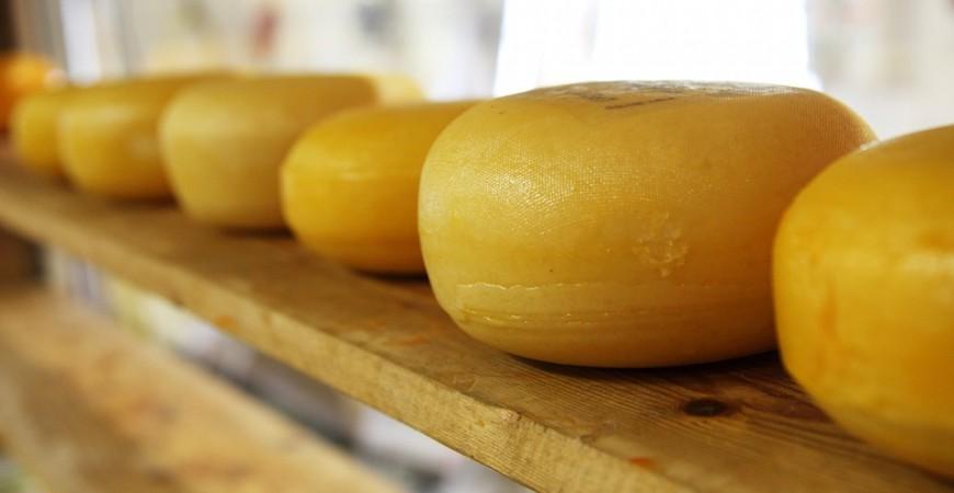 Todo lo relacionado con el queso de Idiazábal